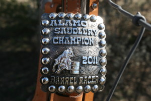Headstall Buckles